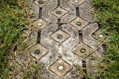 Fußwegenpflasterung verzieren durch Glaskugel mit Rahmen des grünen Grases Stockfoto