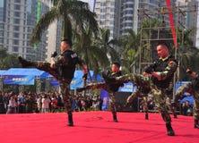 fu chiński kung Obraz Royalty Free