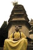 Fu chinês do kung de Shaolin. Imagens de Stock Royalty Free
