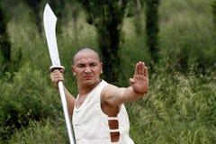 Fu chino del kung Imagen de archivo libre de regalías