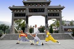 Fu chino del kung Foto de archivo libre de regalías