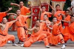 Fu cinese del kung Immagini Stock
