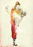 Fu Kung стоковое фото rf