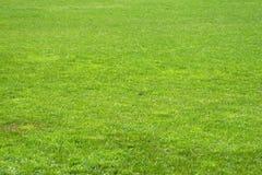 Fußballgras Lizenzfreies Stockfoto