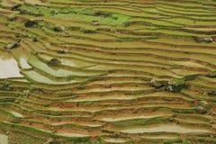 fubaoterrass för kines 9 Fotografering för Bildbyråer