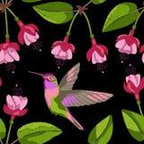 Fuchsia en het naadloze patroon van het kolibrieborduurwerk Royalty-vrije Stock Afbeelding