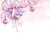 Fuchsia flower, leaves and buds on the textured background with blots in pastel colors. Greeting card with empty place for text. Stock Photos