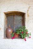 Fuchsia flower on window with ceramic can. Pink and puprple blooms fuchsia flower stock image