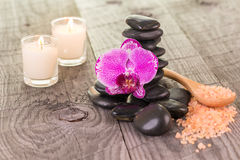 Fuchsia Moth orchid and black stones on weathered deck Royalty Free Stock Images