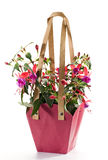 Fuchsia. In the pink paper bag Stock Photos