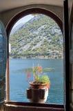 Fuchsia in venster Royalty-vrije Stock Afbeeldingen