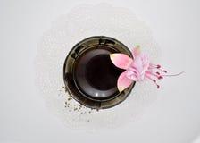 Fuchsiakleurig en zwarte koffie met suiker Stock Afbeelding