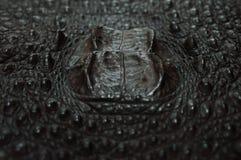 Fucilazione della pelle del coccodrillo macro Immagini Stock Libere da Diritti