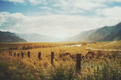 Fucilazione dello spostamento di inclinazione del distretto della montagna di Altai Fotografia Stock