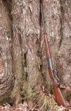 fucile Fotografia Stock Libera da Diritti
