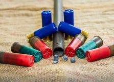 Fucile da caccia Immagine Stock Libera da Diritti