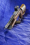Fucile di Bolt della carabina di 22 LR Immagini Stock