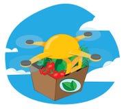 Fuco di trasporto che consegna alimento fresco illustrazione vettoriale