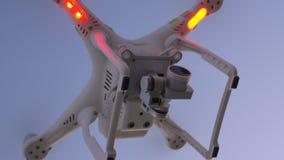 Fuco di volo con le luci intermittenti in cielo di sera stock footage