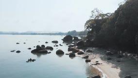 Fuco di volo lungo la spiaggia selvaggia, Langkawi, Malesia video d archivio
