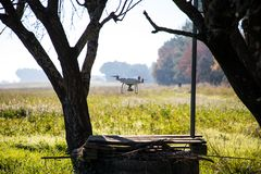 Fuco sopra il pozzo d'acqua e sotto l'albero sulla mattina soleggiata di inverno immagini stock