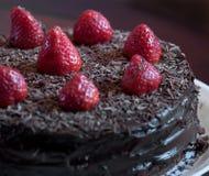 fudge шоколада торта Стоковая Фотография