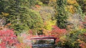 Fudo小河和红色桥梁在登上Nakano-Momiji 库存照片
