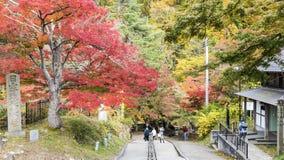 Fudo小河和红色桥梁在登上Nakano-Momiji 库存图片