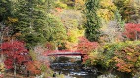 Fudo小河和红色桥梁在登上Nakano-Momiji 免版税库存照片