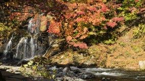 Fudo ström och den röda bron på monteringen Nakano-Momiji Fotografering för Bildbyråer