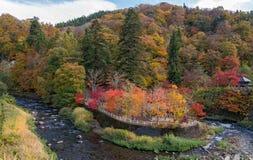 Fudo stream in autumn season at Nakano momiji mountain. Royalty Free Stock Photo