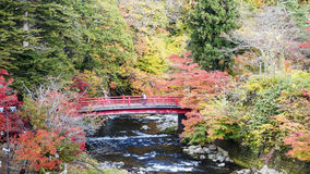 Fudo stream and the red bridge at Mount Nakano-Momiji Stock Images