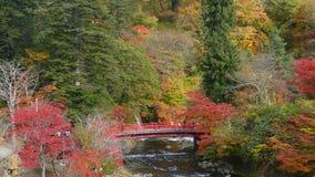 Fudo strumień i czerwony most przy górą Nakano-Momiji, Kuroishi miasto, Aomori prefektura, Tohoku region, Japonia zdjęcie wideo