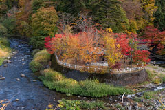Fudo strumień w jesień sezonie przy Nakano momiji górą Fotografia Royalty Free