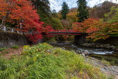 Fudo strumień w jesień sezonie przy Nakano momiji górą Obrazy Stock