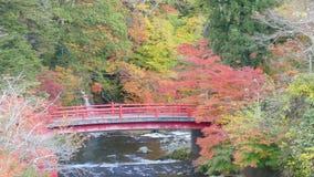 Fudostroom en de rode brug bij Onderstel nakano-Momiji, Kuroishi-stad, Aomori-prefectuur, Tohoku-gebied, Japan stock videobeelden