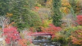 Fudostroom en de rode brug bij Onderstel nakano-Momiji, Kuroishi-stad, Aomori-prefectuur, Tohoku-gebied, Japan stock footage