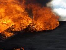 Fuego 8 Imagen de archivo libre de regalías