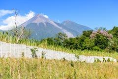 Fuego & Acatenango volcanoes Stock Photos