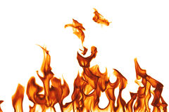Fuego aislado en el fondo blanco. Imagenes de archivo