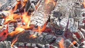 Fuego ardiendo y que arde con los carbones en naturaleza almacen de metraje de vídeo