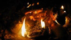 Fuego ardiente con madera en la noche con una llama brillante metrajes