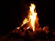 Fuego ardiente de madera Fotos de archivo