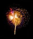 Fuego artificial Fotos de archivo libres de regalías