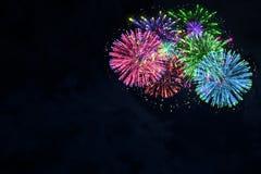 Fuego artificial colorido en el cielo azul de medianoche Foto de archivo libre de regalías
