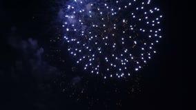 Fuego artificial colorido hermoso celebración almacen de metraje de vídeo