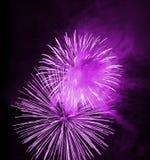 Fuego artificial de la noche Fotografía de archivo libre de regalías