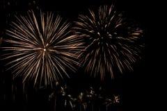 Fuego artificial del día de fiesta. Imágenes de archivo libres de regalías
