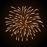 Fuego artificial del día de fiesta del vector Imagen de archivo libre de regalías