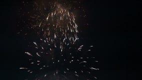Fuego artificial en cielo nocturno almacen de metraje de vídeo